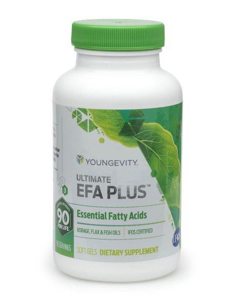 Efa Plus 1