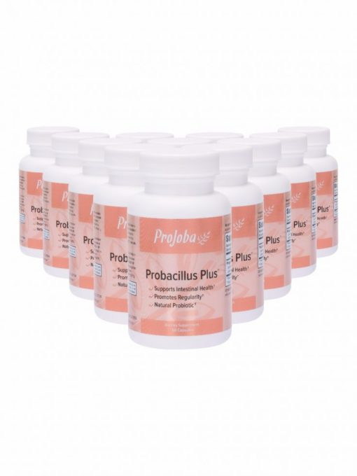 Pj435 Probacillus Plus 0416 12 Pack